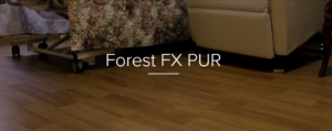 Forest FX Cover photo